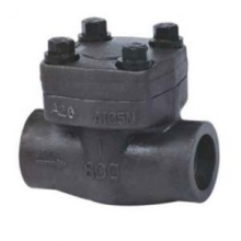 Socket welded forged steel check valve