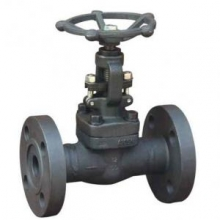 Flanged forged steel globe valve